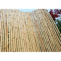 bamboo fencing and bamboo edging