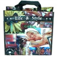 Plastic Woven Gift Bags
