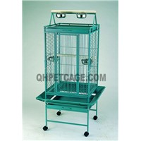 921# parrot cage
