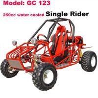 250cc Go Kart(GC-123)