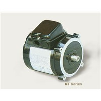 MT series motors