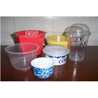 Plastic Paper Disposable Food Containers/Bowls
