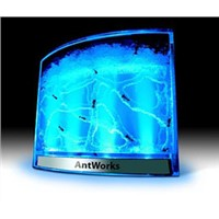 Antworks(toys.toy.ant)
