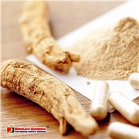 Ginseng Root and American Ginseng Extract for Pharmaceuticals