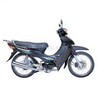 Motorcycle 100-8B