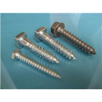 DIN571 Self Tapping Screws