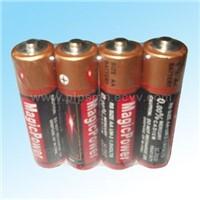 AA Size (R6, UM-3) Dry Batteries