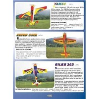 R/C Planes