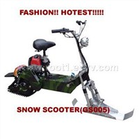 snow scooters and gas scooters