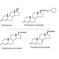 Testosterone,Testosterone Cypionate ,Testosterone Decanoate ,Testosterone Enanthate