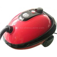 NEW Style Steam Cleaner