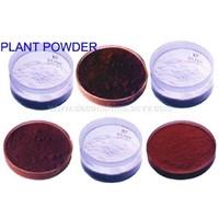 Plant Powder