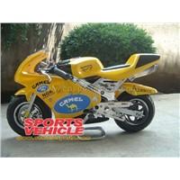 Pocket Bike (SV-G053 B ) PASTER CAMEL
