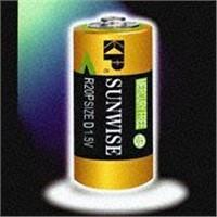 battery , R20