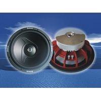 Car Audio Sub Woofer FLT-12e