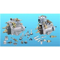 Diesel Parts,Piston ,Clutch Disk ,Pump,Head Rotor,Nozzle,Plunger,D.Valve Ect.