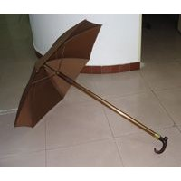 Walking Stick with Umbrella