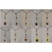 Insect Mobile Phone pendant Like Amber(Real Insect