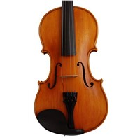 various violins, violas, cellos