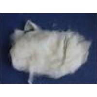 Wool Waste for Carpet Yarn