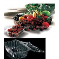 salad and fruit  container, vacuum formed plastic