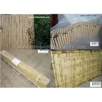 Bamboo fence and edging