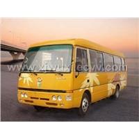 Electric Car  & Bus
