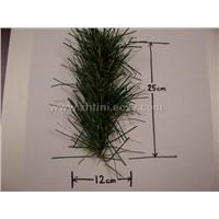 pine needle tips