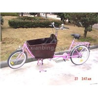 Cargo bicycle GW25-1