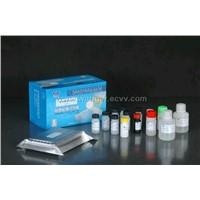 Chloramphenicol ELISA Kit