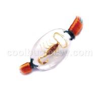 insect amber jewelry bracelets bangle