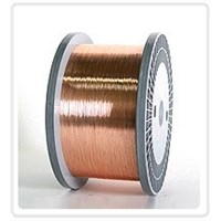 Phosphor Bronze Wire - C5100, C5191, C5212