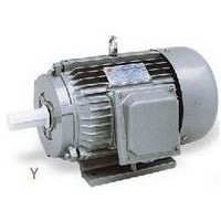 Y Series Three-Phase Asynchronous Induction Motor