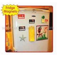 fridge magnets/magnetic card