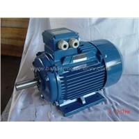 Motor Cast Iron Body Motor