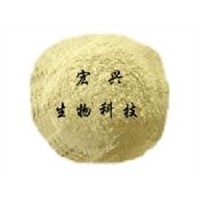 soy protein powder