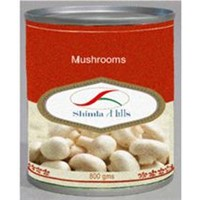 Canned Button Mushrooms