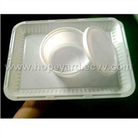 PS white food tray and fastfood container