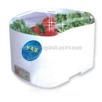Fruit-vegetable Sterilizer