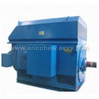 HT induction motor