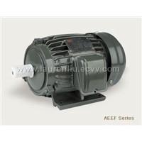 AEEF series AC motor