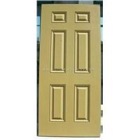 fireglass door