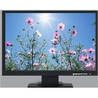 22 inch wide screen lcd monitor