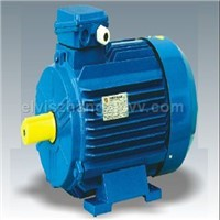 Y2 series three phase asynchronous motor