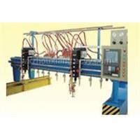 CNC/MULTI-HEAD FLAME STRIP CUTTING MACHINE