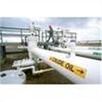 OIL & GASES
