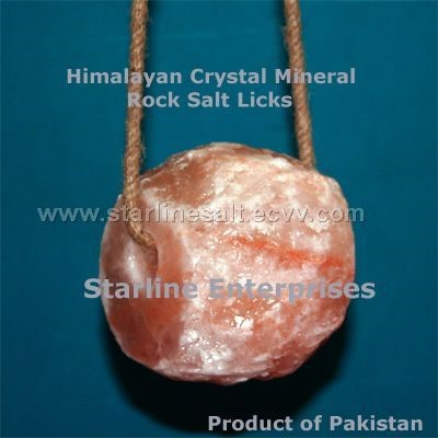 Himalayan Salt Lamps Gamma : Home Depot Shopping 2015 2015 Home Design Ideas