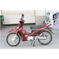 cub50/110/125cc