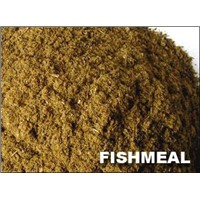 Supply fishmeal