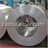 Stainless Steel Welded Cold Rolled Coil/Coils